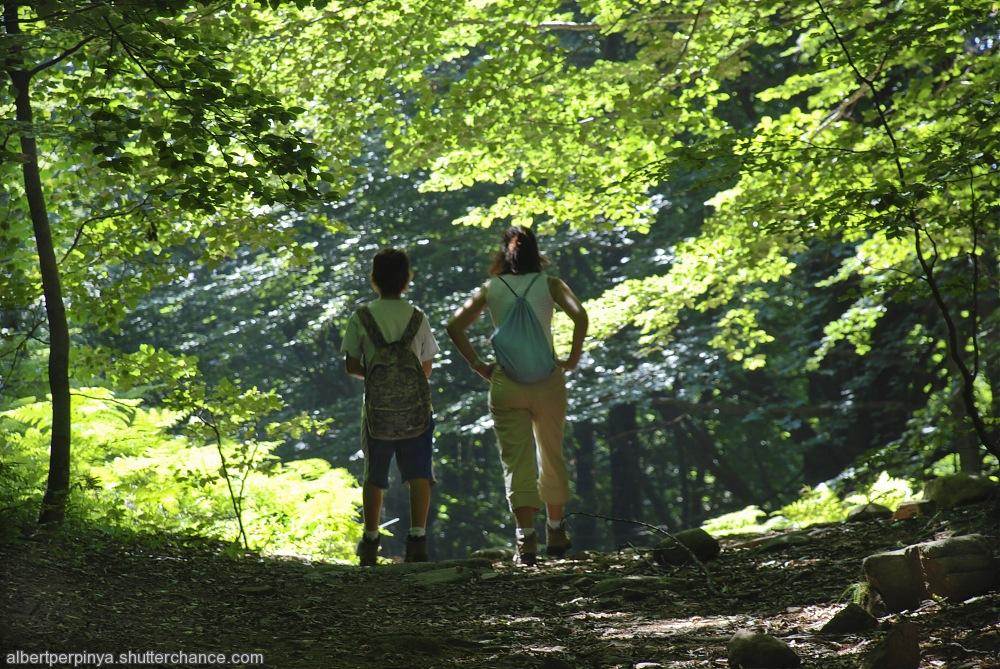 photoblog image El Montseny 3